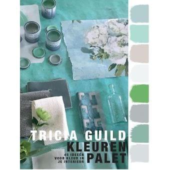 een kleurrijk en handig boek van tricia guild over kleuren in het interieur#tricia guild#kleur in je interieur#kleuren palet#designers guild#dutch seating company