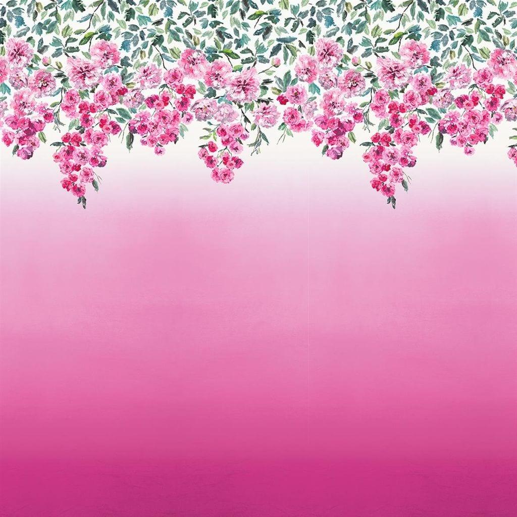 Trailing rose is een behang met kleurovergang en hangende bloemen in het roze van Designers Guild.